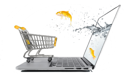 Credibilitatea in e-commerce?