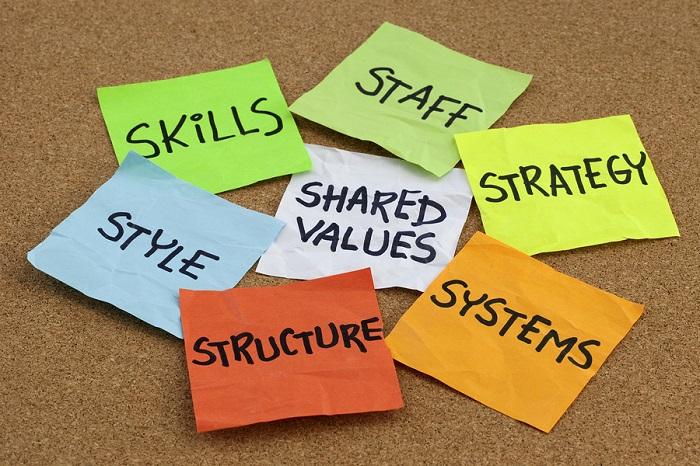 Culturi organizationale inspirationale