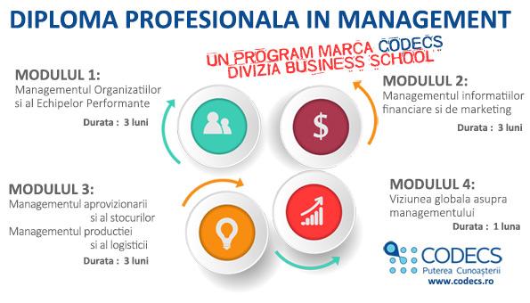 DiplomaProfesionalaManagement_4module