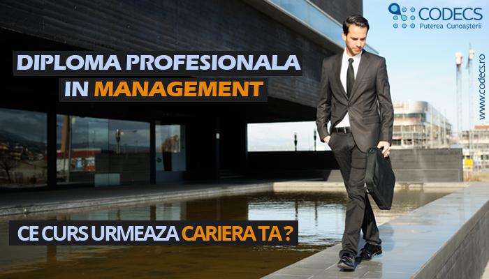 Februarie – Noiembrie 2018, Bucuresti, Diploma Profesionala in Management