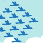 Birds flying in the formation of an arrow shape, following a leader bird. A metaphor on teamwork and leadership.